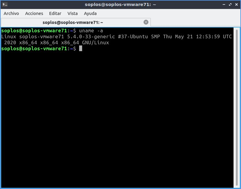 Versión de kernel de Lubuntu.