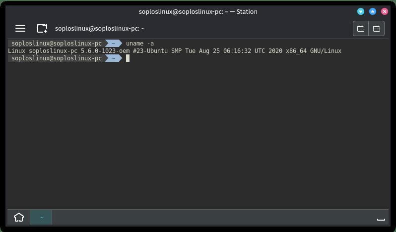 Terminal y versión de Kernel de Nitrux
